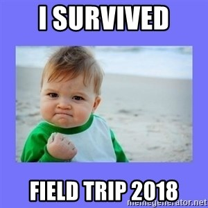 Baby fist - I survived  Field trip 2018