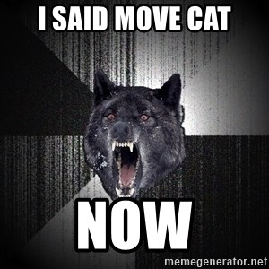 Insanity Wolf - I said move cat NOW