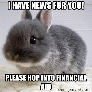 ADHD Bunny - I have News for you! please hop into financial Aid