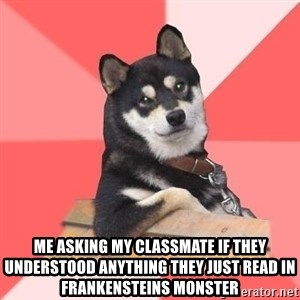 Cool Dog - me asking my classmate if they understood anything they just read in frankensteins monster