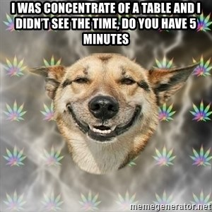 Stoner Dog - I was concentrate of a table and I didn't see the time, do you have 5 minutes