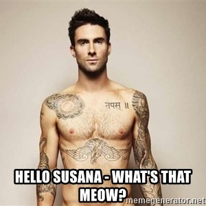 Adam Levine - hello Susana - what's that meow?