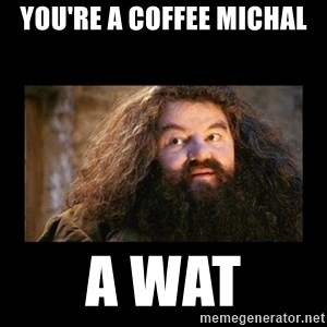 You're a Wizard Harry - You're a coffee michal A WAT