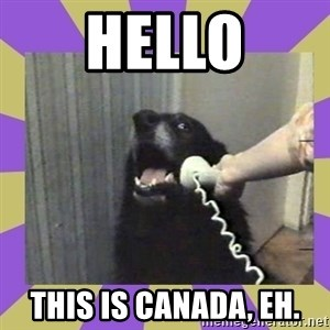 Yes, this is dog! - Hello This is Canada, eh.