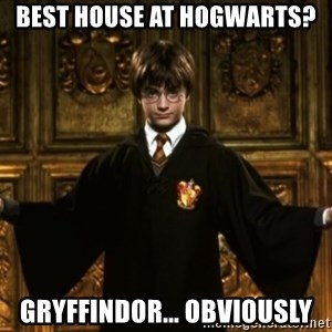 Harry Potter Come At Me Bro - Best House at Hogwarts? Gryffindor... Obviously