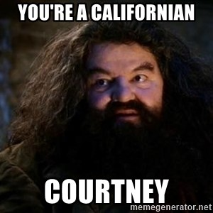 Yer A Wizard Harry Hagrid - You're a californian Courtney