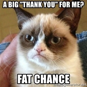 "Grumpy Cat  - A big ""thank you"" for me? fat chance"