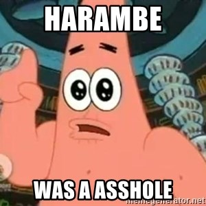 Patrick Says - harambe  was a asshole