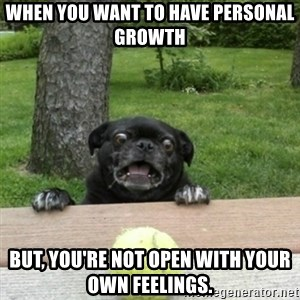 Ermahgerd Pug - When you want to have personal growth  But, you're not open with your own feelings.
