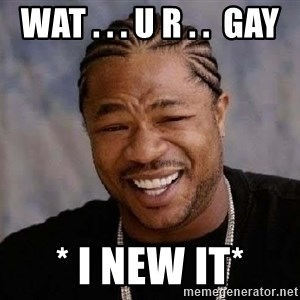 Yo Dawg - wat . . . u r . .  GAY * i new it*