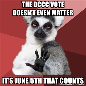 Chill Out Lemur - THE DCCC VOTE                    DOESN'T EVEN MATTER IT'S JUNE 5TH THAT COUNTS