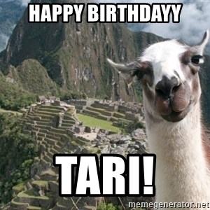 Bossy the Llama - Happy Birthdayy Tari!