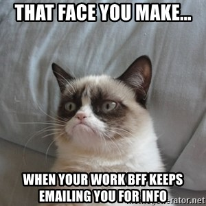 Grumpy cat good - That face you make... when your work BFF keeps emailing you for info