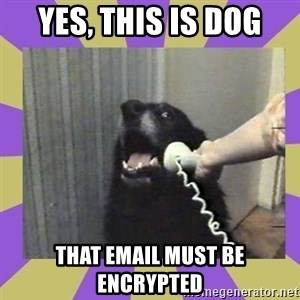 Yes, this is dog! - Yes, this is Dog that email must be encrypted