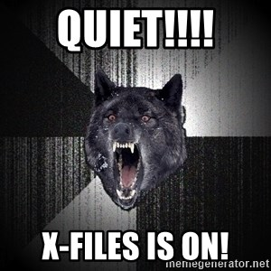 Insanity Wolf - quiet!!!! X-Files is on!