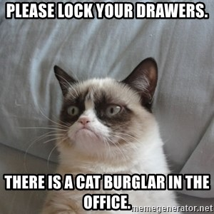 Grumpy cat good - Please lock your drawers. There is a cat burglar in the office.