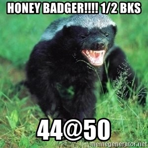 Honey Badger Actual - Honey badger!!!! 1/2 bks 44@50