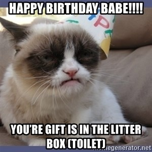 Birthday Grumpy Cat - Happy birthday babe!!!! You're gift is in the litter box (toilet)
