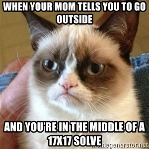 Grumpy Cat  - When your mom tells you to go outside  And you're in the middle of a 17x17 solve