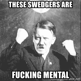 Disco Hitler - These swedgers are fucking mental