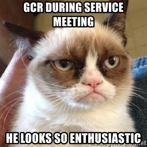 Grumpy Cat 2 - GCR DURING SERVICE MEETING HE LOOKS SO ENTHUSIASTIC