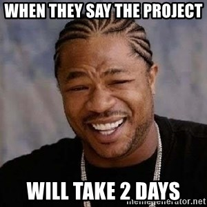Yo Dawg - when they say the project  will take 2 days