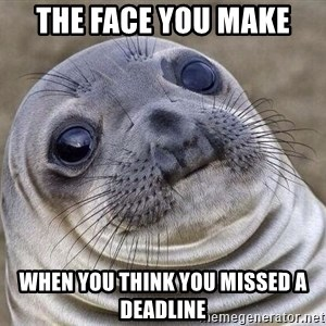 Awkward Seal - the face you make when you think you missed a deadline