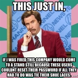 anchorman - This just in, if i was fired this company would come to a stand still because these users couldnt reset their password if all they had to do was tie their shoe laces.