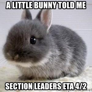 ADHD Bunny - A little bunny told me section leaders ETA 4/2