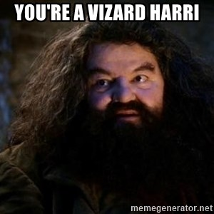 Yer A Wizard Harry Hagrid - You're a Vizard Harri