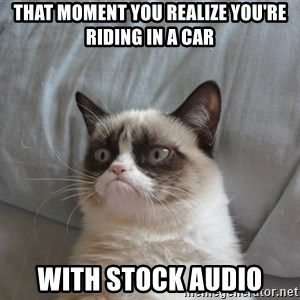 Grumpy cat good - that moment you realize you're riding in a car with stock audio