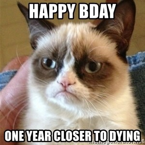 Grumpy Cat  - happy bday one year closer to dying
