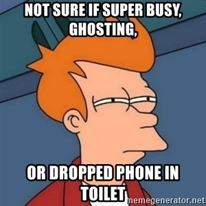 Not sure if troll - Not sure if super busy, ghosting, Or dropped phone in toilet