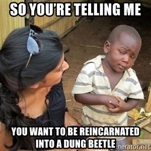 skeptical black kid - So you're telling me  you want to be reincarnated into a dung beetle
