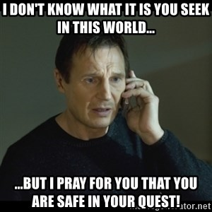 I will Find You Meme - I don't know what it is you seek in this world... ...but I pray for you that you are safe in your quest!