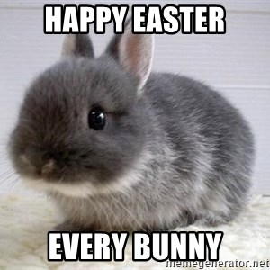 ADHD Bunny - Happy Easter Every bunny