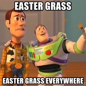 Consequences Toy Story - EASTER GRASS Easter grass everywhere