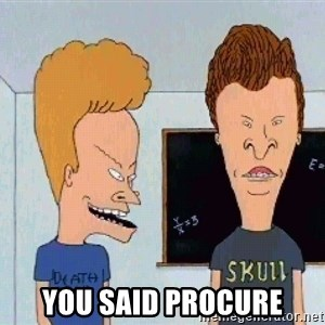 Beavis and butthead - You said procure