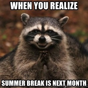 evil raccoon - When you realize  summer break is next month