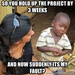 skeptical black kid - So you hold up the project by 3 weeks and now suddenly its my fault?