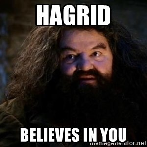 Yer A Wizard Harry Hagrid - Hagrid believes in you