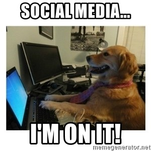 No Computer Idea Dog - social media... i'm on it!