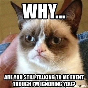Grumpy Cat  - Why... Are you still talking to me event though I'm ignoring you?