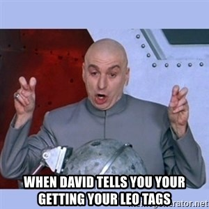 Dr Evil meme - When david tells you your getting your LEO Tags