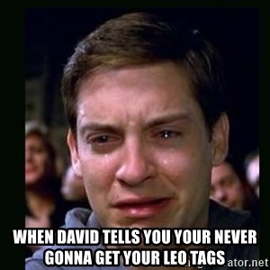crying peter parker - When david tells you your never gonna get your LEO tags
