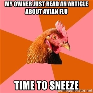 Anti Joke Chicken - My owner just read an article about avian flu time to sneeze