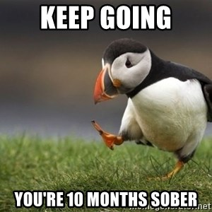 Unpopular Opinion Puffin - Keep going You're 10 months sober
