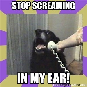 Yes, this is dog! - Stop Screaming  In my ear!