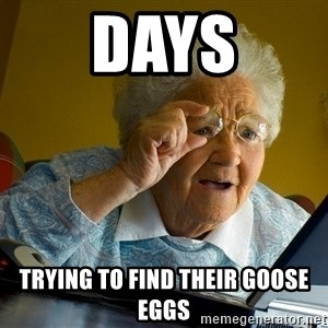 Internet Grandma Surprise - DAYS TRYING TO FIND THEIR GOOSE EGGS