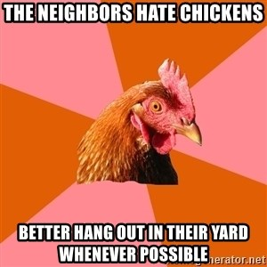 Anti Joke Chicken - The neighbors hate chickens Better hang out in their yard whenever possible